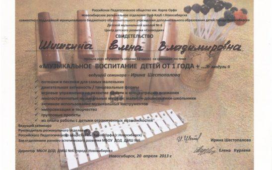 shishkina-elena-vladimirovna-1